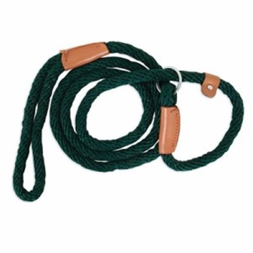 Petmate 223232 13 x 72 in. Slip Dog Lead, Green