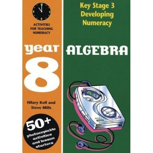 Developing Key Stage 3 Numeracy: Algebra Year 8 (Developing Numeracy)