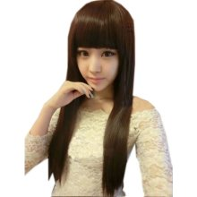 Natural Long Straight Brown Wig Lace Wig