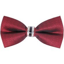 Burgundy Glitter Buckle Bow Tie with Rhinestone Centre