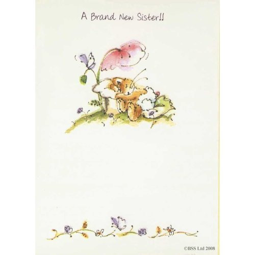 A Brand new sister Greeting Card