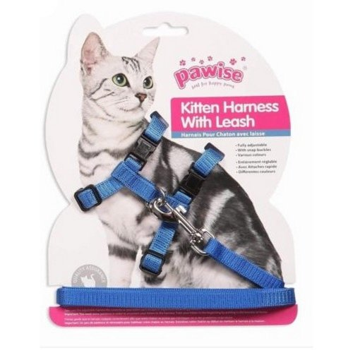 Pawise Kitten Harness And Lead
