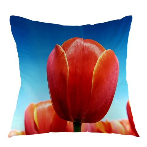 Melyaxu Throw Pillow Case Easter Tulips Flower Square Pillow Cover Cushion Cover for Home Sofa Outdoor Couch Car Seat Decoration 18 x 18 Inch