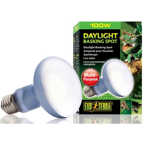 Exo Terra Daylight Basking Bulb R25 100w