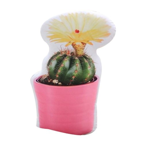 Creative Cushion Birthday Gift Sleeping Pillow Simulation Cactus Plants On OnBuy