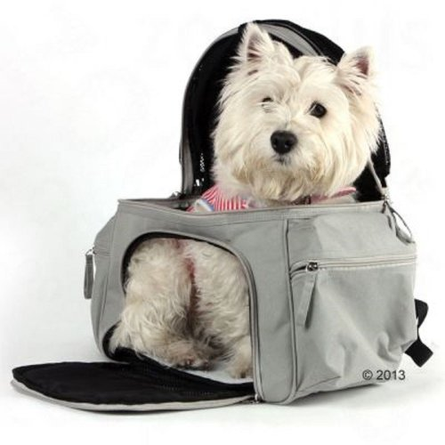 Small Pet Carrier Backpack for Cats or Dogs