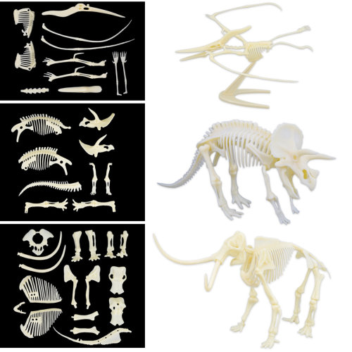 deAO Set of 3 Skeleton Figures Dinosaur and Animal Toys to Assemble for Children Educational Simulated Bones Set (Triceratops, Pterosaurus, Mammoth)