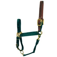 Hamilton 1-Inch Nylon Adjustable Horse Halter with Leather Head Poll and Throat Snap, Average, Dark Green