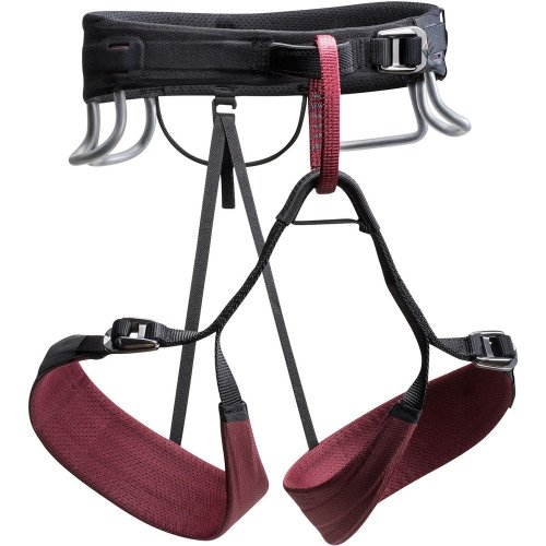 Black Diamond Womens Technician Climbing Harness Rhone (Small)
