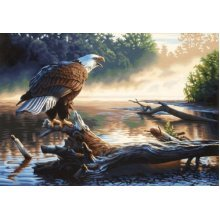Paintsworks Paint By Numbers Eagle Hunter Paint Set