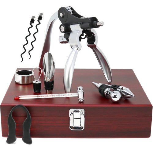 10 Pieces Wine Tools Set