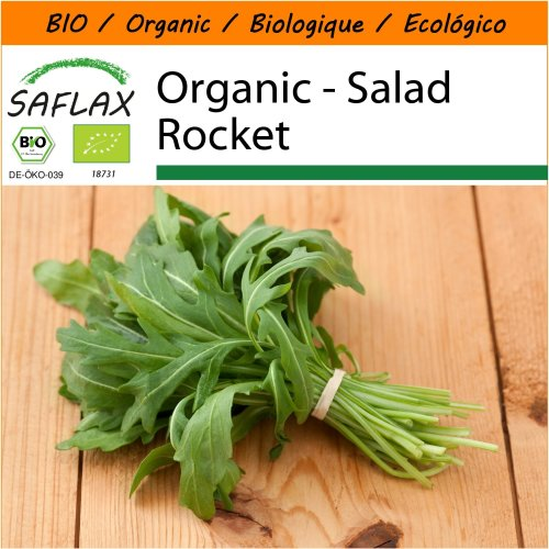 SAFLAX Garden in the Bag - Organic - Salad Rocket - 3000 certified organic seeds  - Eruca