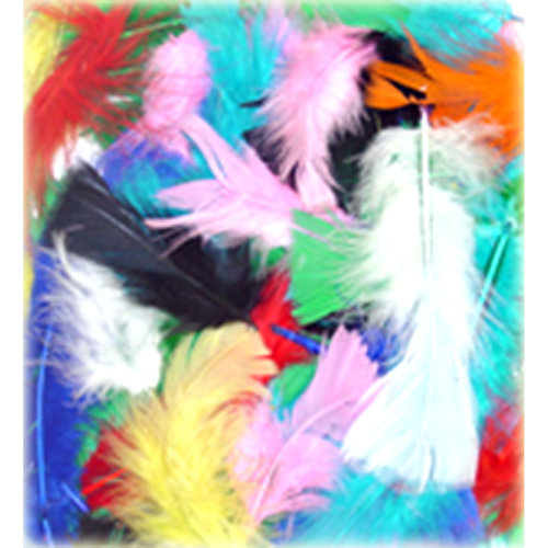 Flat Turkey Feathers 14g-Assorted Colors