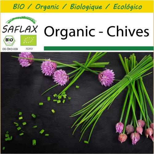 SAFLAX Potting Set - Organic - Chives - 250 certified organic seeds  - Allium