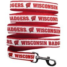Pets First College Wisconsin Badgers Pet Leash, Large