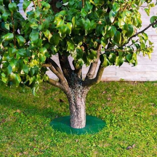 Tree Guard - Weed & Grass Control around Tree trunks Or Posts - 2 Pack (Small) - Grass Edge