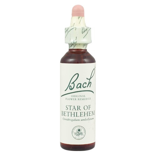 Bach Original Flower Remedies Star of Bethlehem 20ml (order 130 for Trade Outer)
